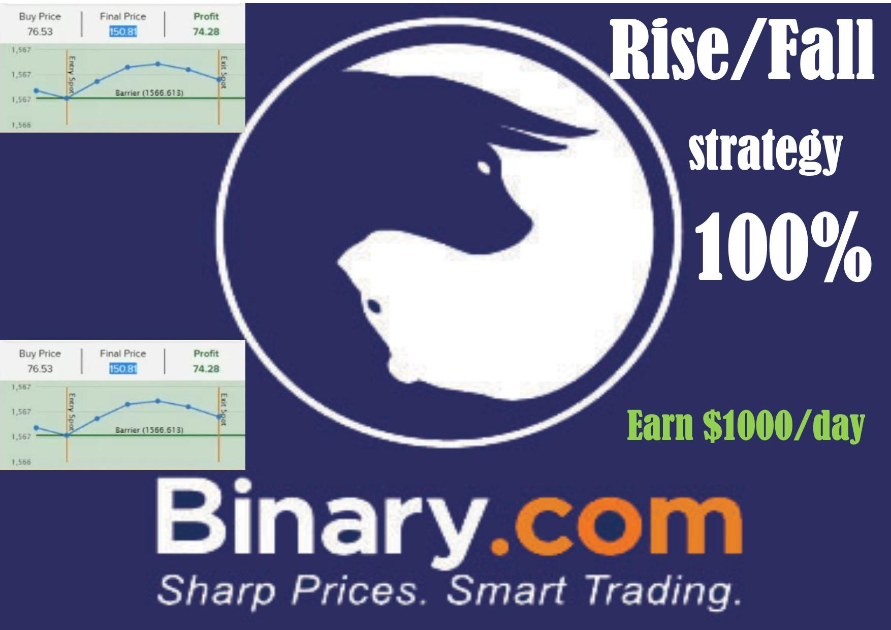 binary13-1